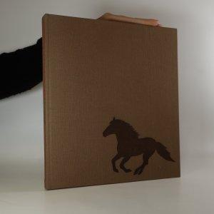 náhled knihy - Das grosse Pferdebuch