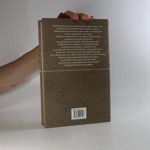 antikvární kniha Ledová pustina, 2001