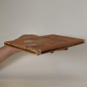 antikvární kniha Kratochvilná historie o ptáku Velikánu Velikánoviči, 1890