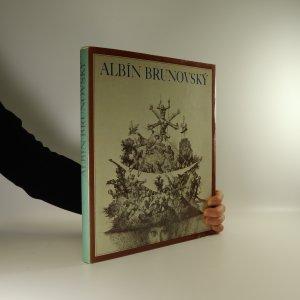 náhled knihy - Albín Brunovský