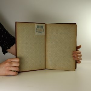 antikvární kniha Malerische Wanderungen durch Prag, 1884