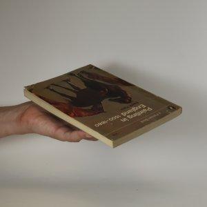 antikvární kniha Painting in England 1500-1880, neuveden