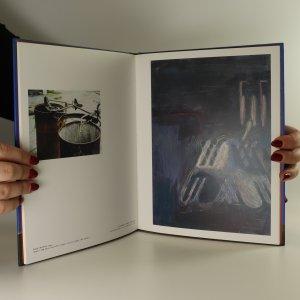 antikvární kniha Lubomír Typlt. Urychlovat nekonečno. Accelerate infinity, neuveden