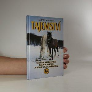 náhled knihy - Tajemství slečny Madlenky, kluka Matěje a koně Zlatohříváka