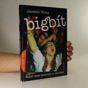 náhled knihy - Bigbít aneb Pendl mezi somráky a veksláky