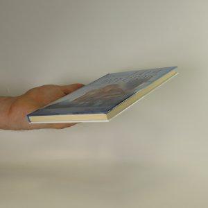 antikvární kniha Hra s nevěrou, 2007