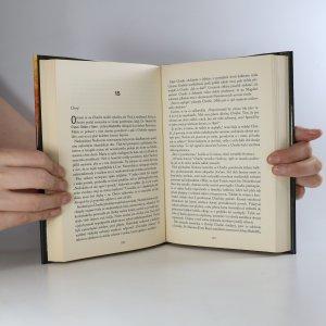 antikvární kniha Bludiště temnoty, 2011