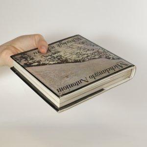 antikvární kniha Kuželník u Tiberu, 1989