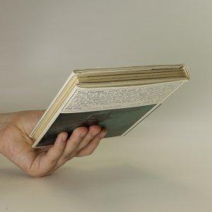 antikvární kniha Létavice a lunatici, 1978