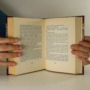 antikvární kniha Bludiště. Román jinošství (2 svazky), 1937