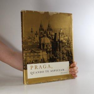 náhled knihy - Praga, quando te aspiciam...