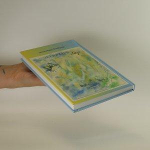 antikvární kniha Blíženci, 2005