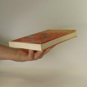 antikvární kniha Beatrice and Virgil, 2010