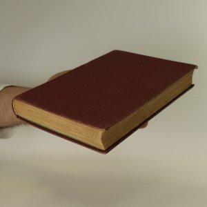 antikvární kniha Dora a jiné povídky. Jak jdou lásky světem, 1. svazek, 1929