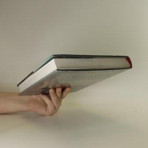 antikvární kniha 3 a 1/2 roku II aneb S vírou a odhodláním, 2007