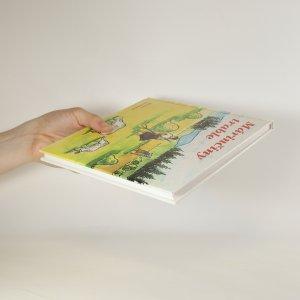 antikvární kniha Márinčiny trable , 1999