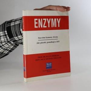 náhled knihy - Enzymy. Stavební kameny života.Jak působí, pomáhají a léčí