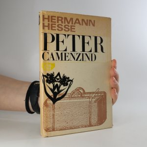 náhled knihy - Peter Camenzind