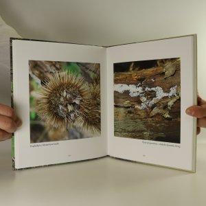 antikvární kniha Lesní kulináry, 2015
