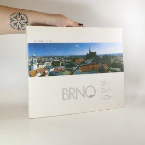 náhled knihy - Brno. Procházka dějinami a architekturou města