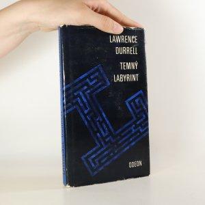 náhled knihy - Temný labyrint