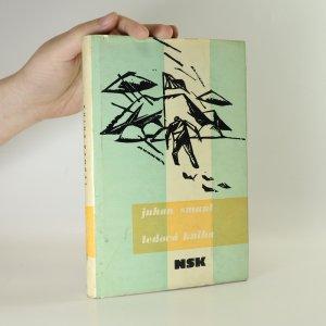 náhled knihy - Ledová kniha. Antarktický cestovní deník