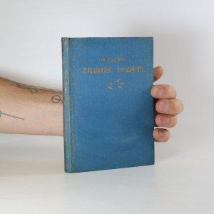 náhled knihy - Zajatec pouště