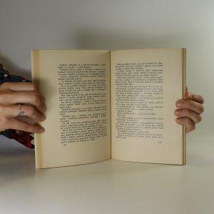 antikvární kniha Ruská fronta v nebezpečí, neuveden