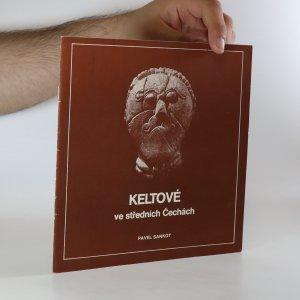 náhled knihy - Keltové ve středních Čechách