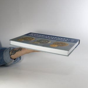antikvární kniha Wundmanagement und Pflegeentwicklungen, 2010