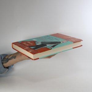 antikvární kniha Bringing Home the Birkin, 2008
