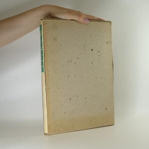 náhled knihy - Matyáš Bernard Braun