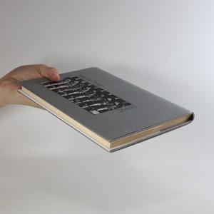 antikvární kniha Lupič, 2008