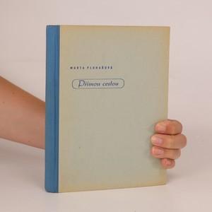 náhled knihy - Přímou cestou