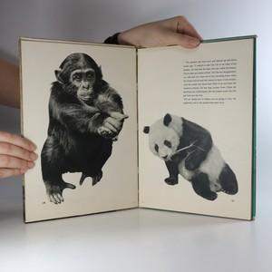 antikvární kniha Introducing Chi Chi, neuveden
