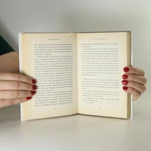 antikvární kniha Deník špatné matky, 2006