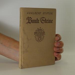 náhled knihy - Bunte Steine