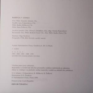 antikvární kniha Raduga 3 učebnice , 1999