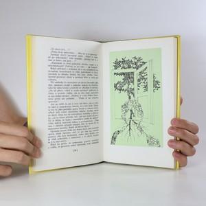 antikvární kniha Tráva kvete, 1982