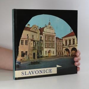 náhled knihy - Slavonice