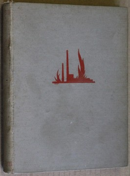 náhled knihy - Plameny : román