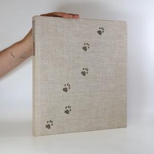 náhled knihy - Das große Katzenbuch