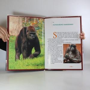 antikvární kniha Pohádkové příběhy gorilí rodinky, 2007