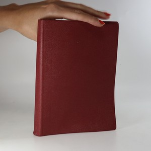 náhled knihy - Biblická konkordance