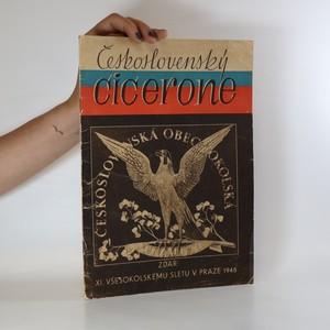 náhled knihy - Československý cicerone. XI všesokolský slet v Praze 1948