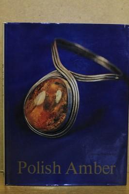 náhled knihy - Polish amber