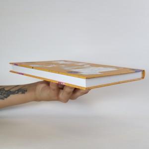 antikvární kniha Tajemství Leny Notýskové, 2014