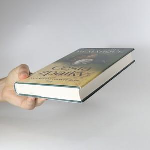 antikvární kniha Cesta zpátky, 2011