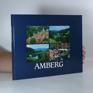 náhled knihy - Amberg