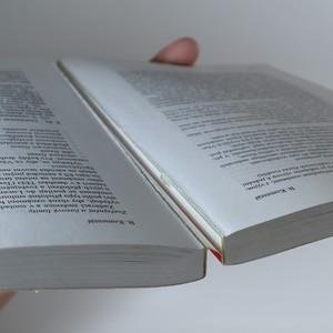 antikvární kniha Zákon o veřejných zakázkách. Komentář, 2004